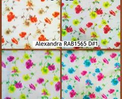 Alexandra RAB1565 D#1